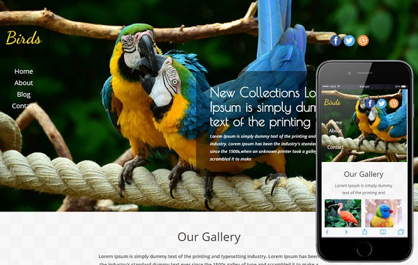 Image Showing A Website Design Template of Birds Business In Both Desktop and Mobile View.
