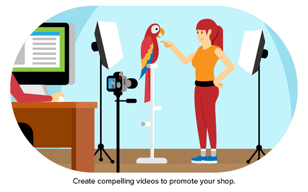 An Animated Image That Showing PEt Owner Train Her Bird To Promote The Pet Business.